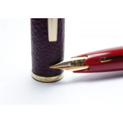Platinum 18K Gold SF Nib Fountain Pen / Burgundy