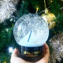 Platinum Snow Globe