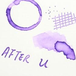 Tono & Lims After U Fountain Pen Ink-Baby Color
